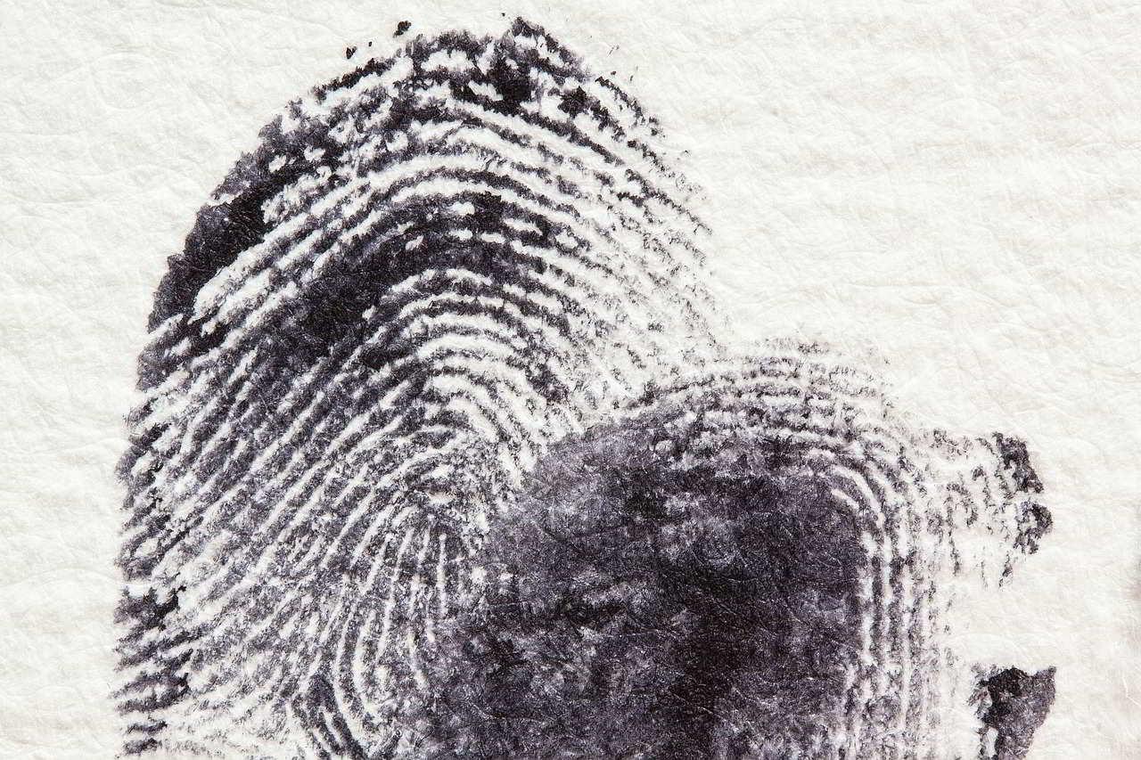 Huella Dactilar Forense Criminalistica Derecho