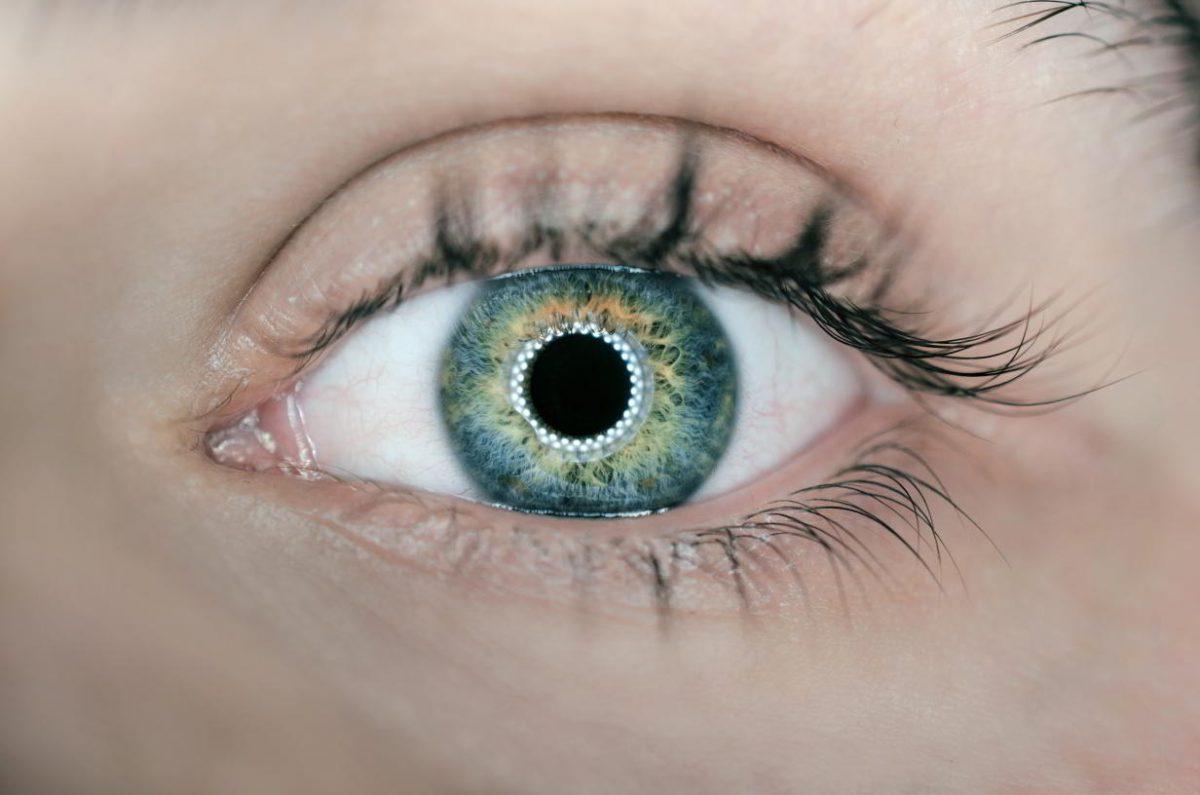 Ojo vision percepcion psicologia