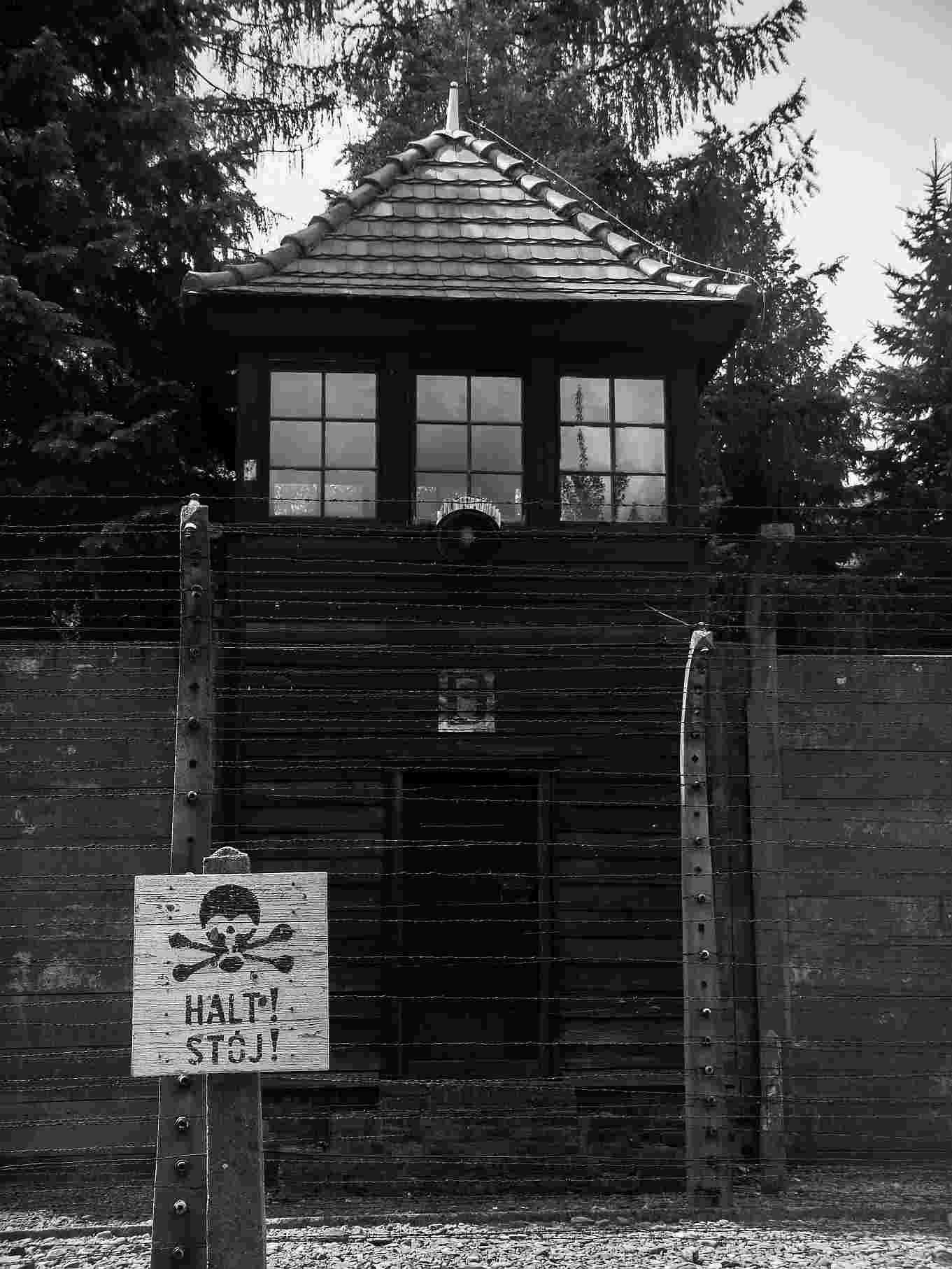 Auschwitz Polonia Segunda Guerra Mundial Historia
