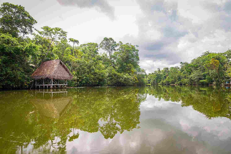 Rio Amazonas Brasil
