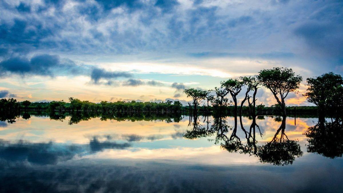 Río Amazonas Brasil 7 Maravillas del Mundo