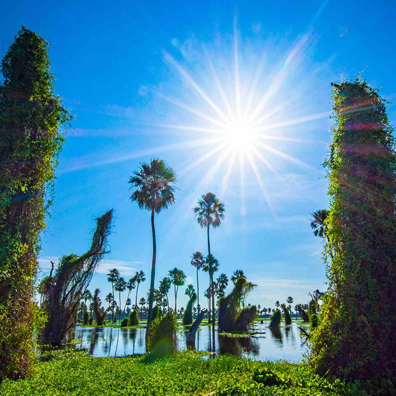 Bañado Estrella Formosa Argentina 7 maravillas