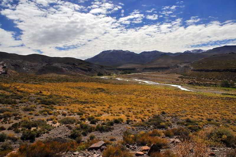 Monte Malargue Mendoza Argentina