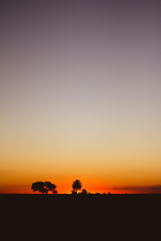Oro Verde Entre Ríos Argentina
