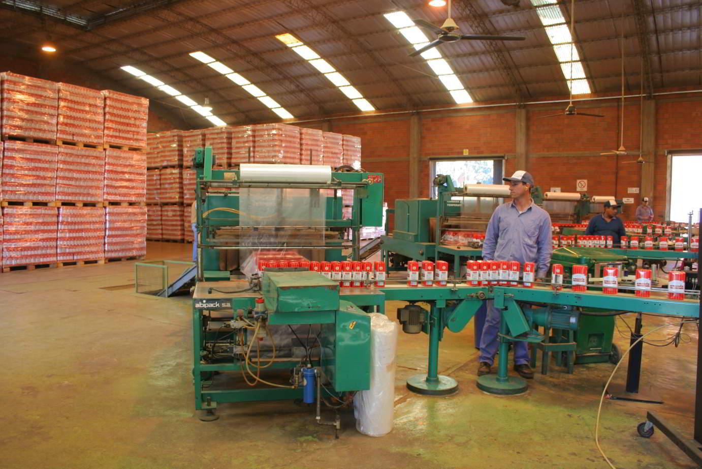 Produccion Yerba Mate Argentina Envasado