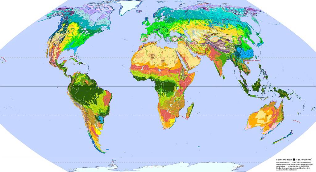 Biomas mundiales